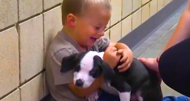 Junge Bentley und sein Haustier. Quelle: Screenshot Youtube