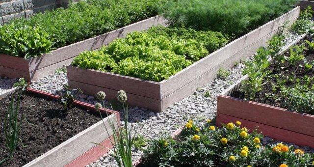 Garten. Quelle: Screenshot Youtube