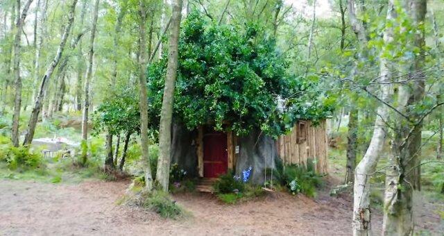 Winnie-Puuh-Hütte. Quelle: Screenshot Youtube