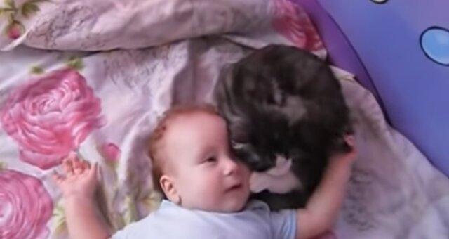 Katze versucht, das weinende Baby zu beruhigen. Quelle: Screenshot Youtube