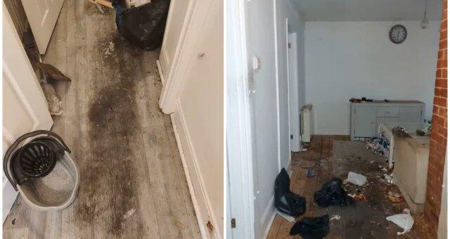Die schmutzigste Wohnung. Quelle: Screenshot Youtube