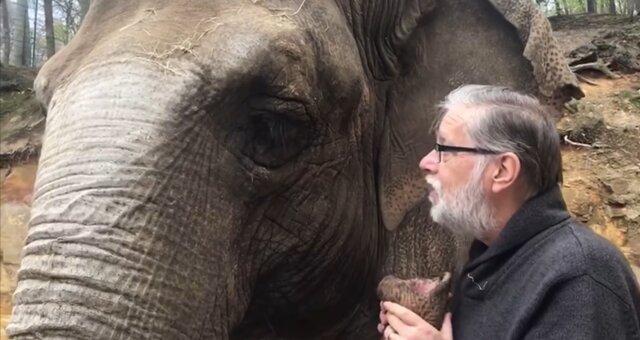 Adamson und Elefantin Kirsty. Quelle: Screenshot Youtube