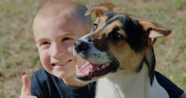 Roman und Hund. Quelle: Screenshot Youtube